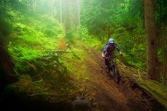 lockeres Trailfahren in höheren Geschwindigkeiten