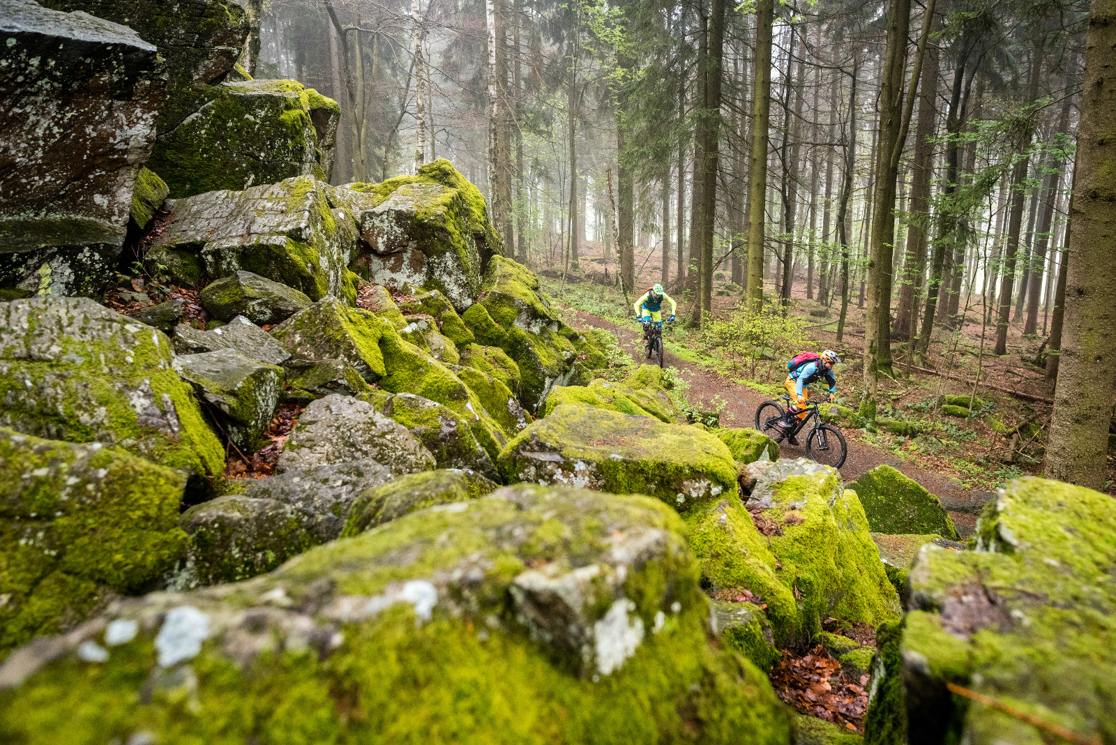 bemooster Basalt und schöne Trails