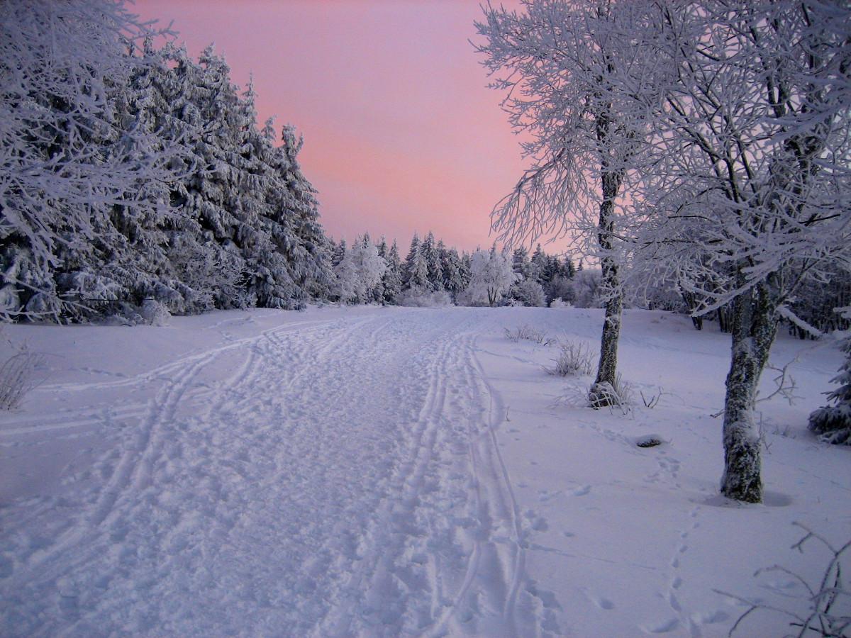 unterwegs auf Langlauf Ski in der Rhön