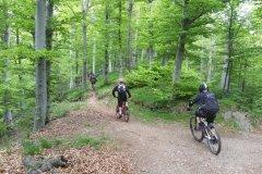 Trailhead in Ligurien, es beginnt unscheinbar und endet in Trails der Extraklasse