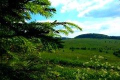 sattes grün und herrliche Stimmungen in der Rhön
