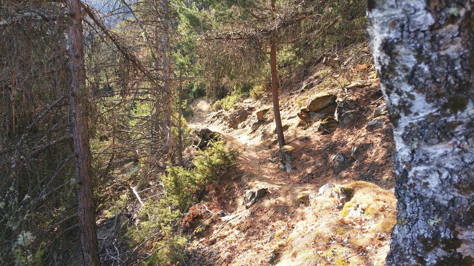 wieder ein Vinschger Trail